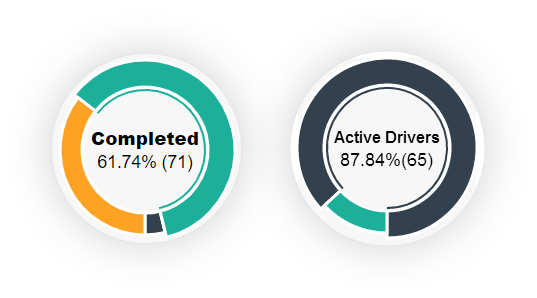 Rides and Driver Statistics Screen